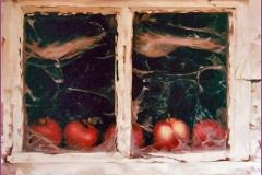 Manzanas. Óleo sobre lienzo 55 x 46
