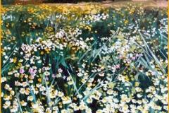 Campo de margaritas. Óleo sobre lienzo 46 x 38